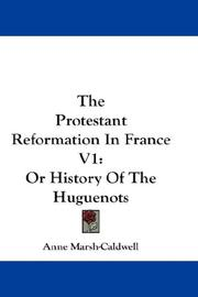 Cover of: The Protestant Reformation In France V1 | Anne Marsh-Caldwell