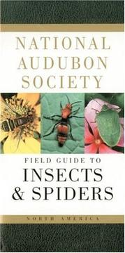 Cover of: National Audubon Society Field Guide to North American Insects and Spiders (Audubon Society Field Guide)