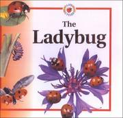 Cover of: Ladybug (Life Cycle of A...) | Sabrina Crewe