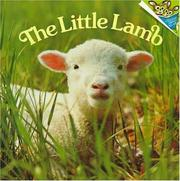 Cover of: The little lamb | Judy Dunn