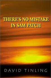 Cover of: There's No Mistake in SAM Patch