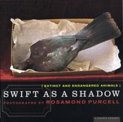 Cover of: Swift as a shadow