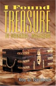 Cover of: I Found Treasure in Wannabe, Michigan