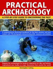 Cover of: Practical Archaeology: a  step-by-step guide to uncovering the past