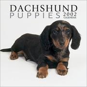 Cover of: Dachshund Puppies 2002 Wall Calendar |
