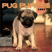 Cover of: Pug Puppies 2002 Wall Calendar |