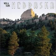 Cover of: Wild & Scenic Nebraska 2002 Wall Calendar