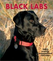 Black Labrador Retrievers 2003 Calendar