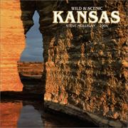 Cover of: Wild & Scenic Kansas 2004 Calendar