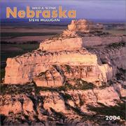 Cover of: Wild & Scenic Nebraska 2004 Calendar