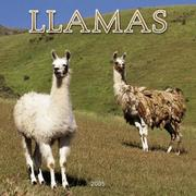 Cover of: Llamas 2005 Wall Calendar | BrownTrout Publishers