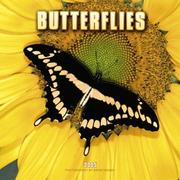Cover of: Butterflies 2005 Wall Calendar | BrownTrout Publishers