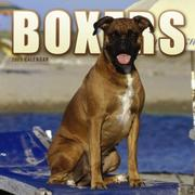 Cover of: Boxers (Euro) 2005 Wall Calendar | BrownTrout Publishers