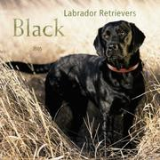 Cover of: Black Labrador Retrievers 2005 Wall Calendar | BrownTrout Publishers