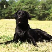 Cover of: Black Labrador Retrievers 2005 Mini Wall Calendar | BrownTrout Publishers