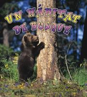 Cover of: Un Habitat De Bosque/ A Forest Habitat (Introduccion a Los Habitats/ Introduction to Habitats)