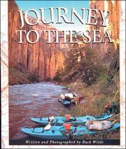 Cover of: Journey to the Sea (Literacy Links Plus Big Books Fluent)