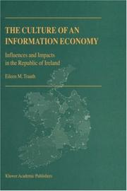 Cover of: The Culture of An Information Economy