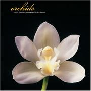 Cover of: Orchids 2006 Wall Calendar