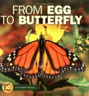 Cover of: From Egg to Butterfly (Start to Finish)