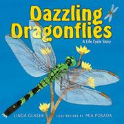 Cover of: Dazzling Dragonflies