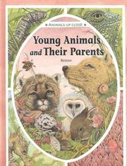 Cover of: Young Animals and Their Parents (Animals Up Close) by Renne