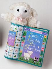 Cover of: Little Lamb's Big Question