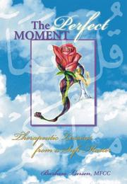 Cover of: The Perfect Moment