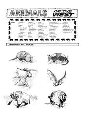Cover of: Animals of the West