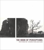 Cover of: The Book of Perceptions