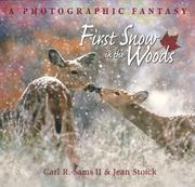Cover of: First snow in the woods