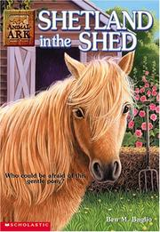 Cover of: Shetland in the Shed (Animal Ark Series #20) |