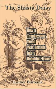 Cover of: The Shasta Daisy: How a Troublesome Weed Was Remade Into a Beautiful Flower
