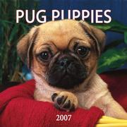 Cover of: Pug Puppies 2007 Mini Calendar | BrownTrout Publishers