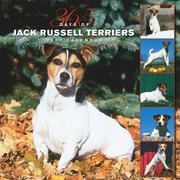 Cover of: Jack Russell Terriers 365 Days 2007 Calendar | BrownTrout Publishers