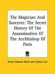 Cover of: The Magician And Sorcerer | Arthur Edward Waite