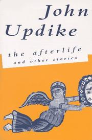 Cover of: The Afterlife