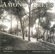 Cover of: Among Trees 2004 Calendar | Sean Kernan