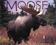 Cover of: Moose 2003 Calendar |