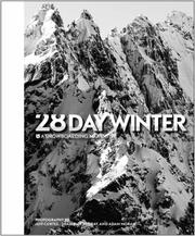 Cover of: 28 Day Winter |