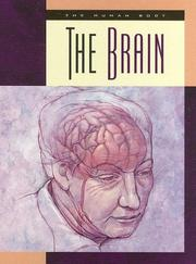 Cover of: The Brain (The Human Body) | Susan Heinrichs Gray