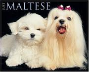 Cover of: Just Maltese 2006 16-Month Wall Calendar | Willow Creek Press