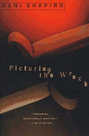 Cover of: Picturing the wreck