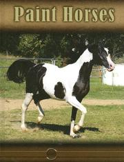Cover of: Paint Horses (Eye to Eye With Horses) |