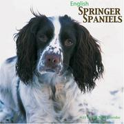 English Springer Spaniels 2008 Wall Calendar