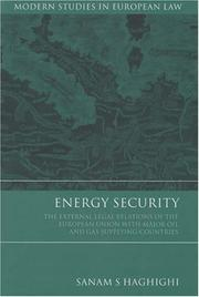Cover of: Energy Security | Sanam S. Haghighi