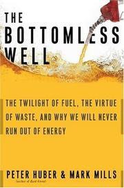 Cover of: The bottomless well