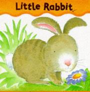Cover of: Little Rabbit (Board Books - Smee)