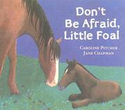 Cover of: Don't Be Afraid, Little Foal