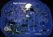 Cover of: Night Animals |